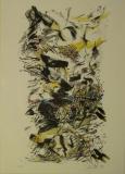 1996,Kaskade,40 x 30 cm