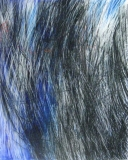 2010, Geste blau, Öl, Glas, LW, 50x40cm